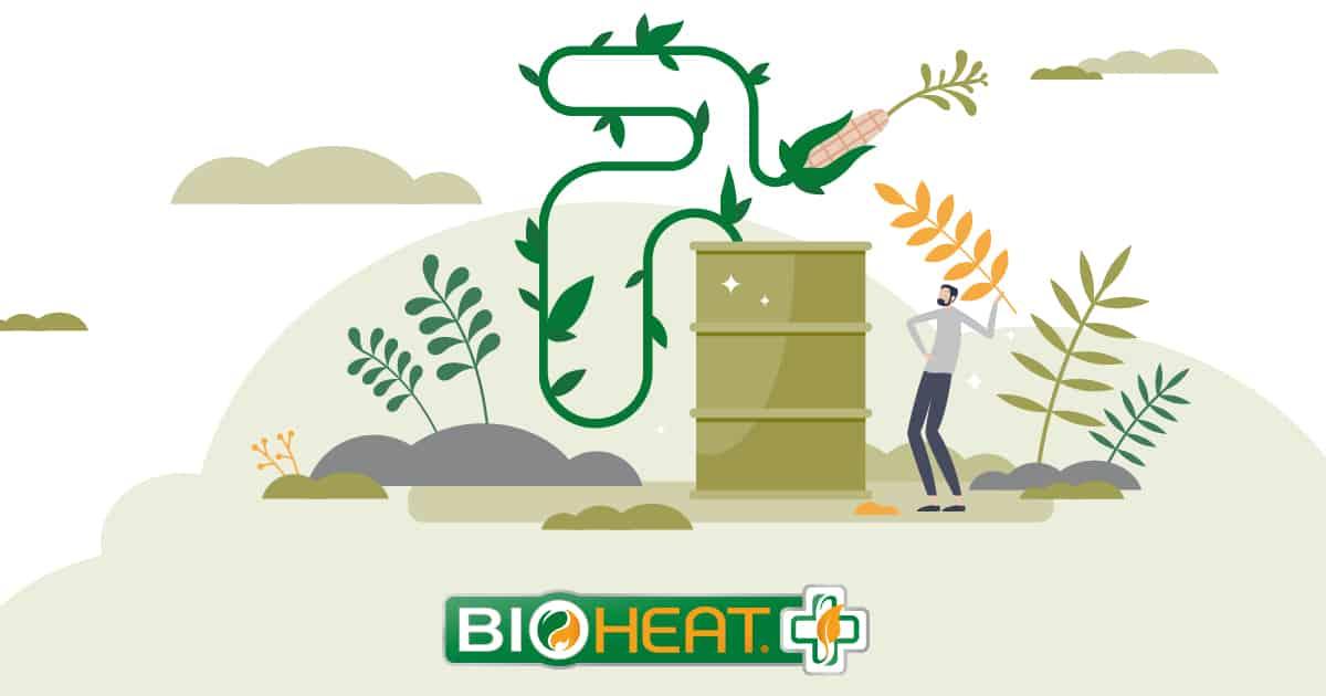 bioheat fuel production